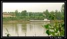 Estuaire de la Gironde_Garonne_13