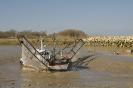 Estuaire de la Gironde & Garonne
