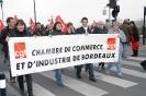 Manifestation Bordeaux 29 janvier 2009_28