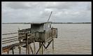 Estuaire de la Gironde_Garonne_17